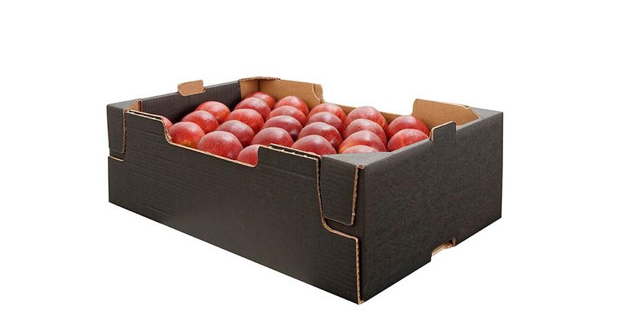 verpackung-karton-2lagig