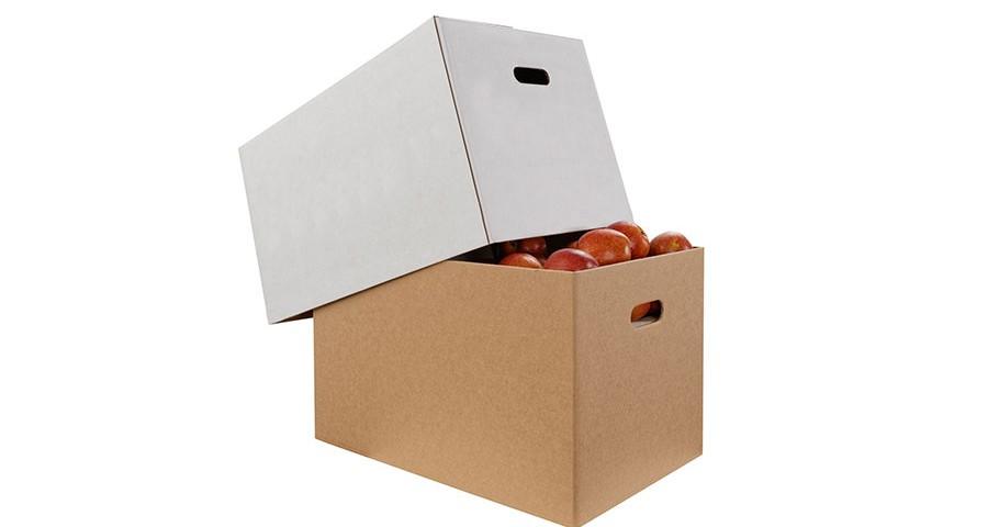 verpackung-ueberseekarton